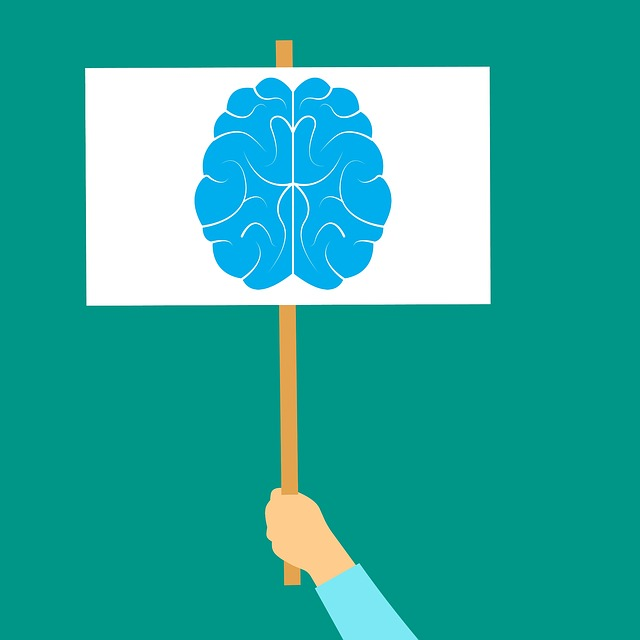 brain-icon-3268442_640